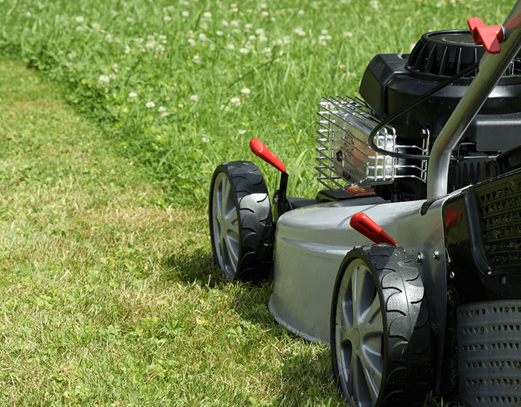 Mow lawns in the spring and summer for extra cash.